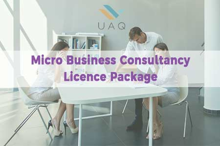 Micro Business Consultancy Licence Package
