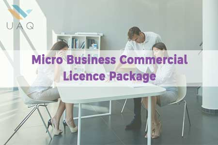 Micro Business Commercial licence